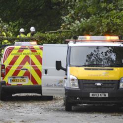 Photo showing two Island Roads vans attending the site of a fallen tree to undertake emergency clearance works