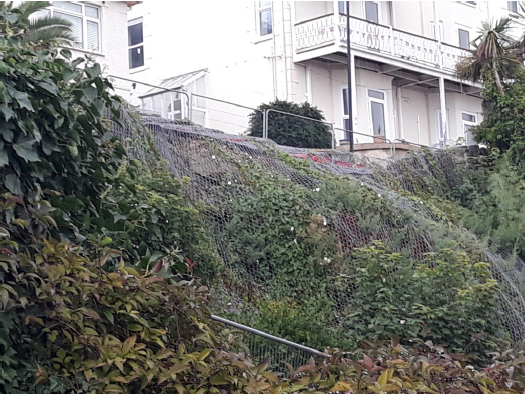 Photo showing protective netting over partial wall collapse and vegetation at Belgrave Road, Ventnor August 2020